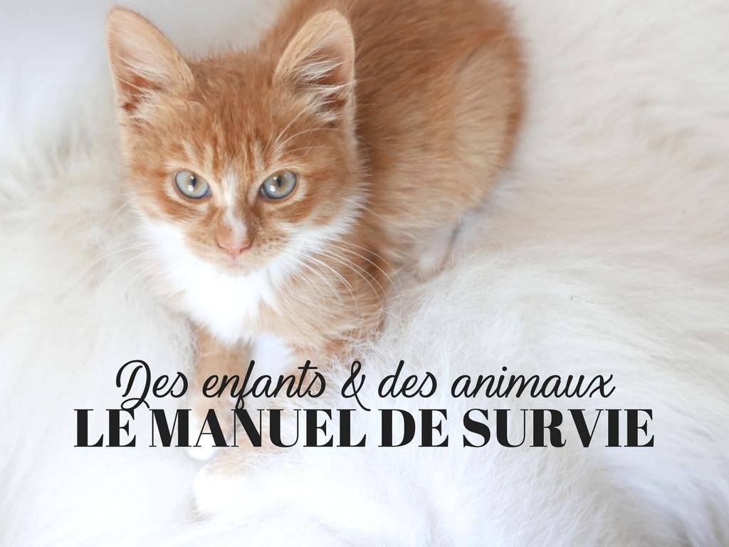 Chat Pisse Tapis Salle De Bain ~ 4 enfants 1 chien et 4 chats le manuel de survie zozomum cie